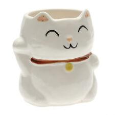 1x Japanese Lucky White Cat  Mug #113-090