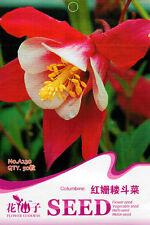 1 Pack 50 Red Columbine Seeds Aquilegia Quilegia Garden Columbine Flowers A230