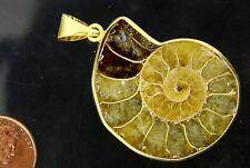 BUTW Gold Electroformrd Ammonite nautiloid fossil pendant necklace jewelry 7177P
