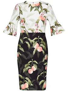 NWT $315 Ted Baker Areea Floral Colorblock Dress 1