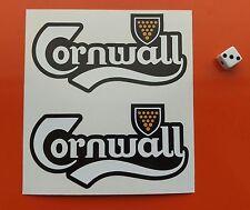 Cornwall Sticker Carlsberg St Piran Flag Car/Van external window sticker VW