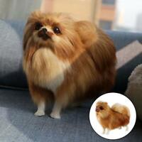 Pomeranian Simulation Dog Plush Toy Doll Stuffed Toy Kids Gifts Realistic