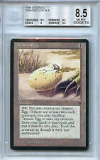 MTG Legends Triassic Egg BGS 8.5 NM-MT+ card Magic the Gathering WOTC 7732