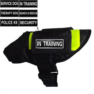 IN TRAINING SERVICE DOG Vest Harness with POCKETS & Side Bags magic Patches