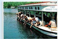 Silver Springs Florida Feeding Fish Chief Charlie Boat Cypress 4x6 Postcard A44