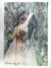 German Wirehaired Pointer Dog Pure Breed Every day use decorative Garden flag