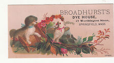 Broadhurst's Dye House Springfield MA Dog White Bird Canary Basket Card c1880s
