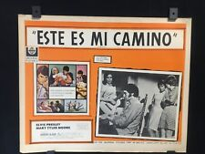 "1969 Elvis Presley CHANGE OF HABIT Original Mexican Lobby Card Movie Art 16""x12"""
