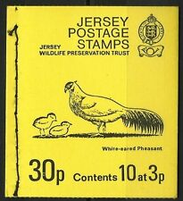 JERSEY TOMBE PREHISTORIQUE TOMB PAYSAGE HOUGUE BIE **1974 CARNET 10 VAL INVERSEE