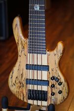 Wolf SSB 7 String Jazz bass Guitar Spalted Maple