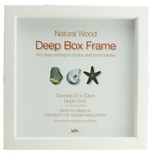 Innova Editions Deep Box Standard Single Photo Picture Image Frame Memorabilia