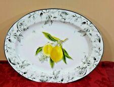 Williams Sonoma Myer Lemon Oval Porcelain Platter NEW