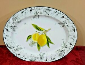 Williams Sonoma Myer Lemon Oval Porcelain Platter NEW