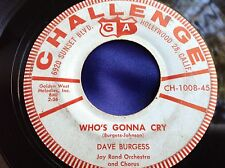Hear Rare Soft Rockabilly 45 : Dave Burgess ~ I'm Available ~ Challenge CH 1008