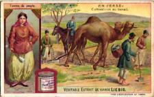 6 Cards c1907   In Persia Derviche Camel Streetmarket Music Dance