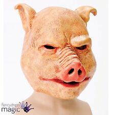 Adult Mens Horror Pig Latex Mask Scary Evil Animal Halloween Fancy Dress Costume