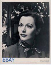 Hedy Lamarr classic beauty VINTAGE Photo