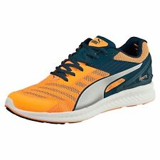 the latest c0d86 4ceb4 PUMA IGNITE v2 Running Shoes Running Low Boot Male Nuevo