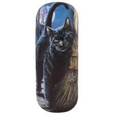 Brush With Magik  - Black Cat Glasses Case - By Lisa Parker