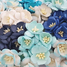 50 Paper Flowers Wedding Party Card Scrapbook Basket Dolls Craft Supply S3-607