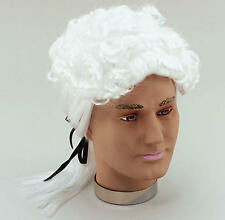 White Court Wig Black Bow 20'S Barrister Lawyer Fancy Dress