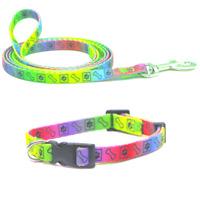 Puppy Dog Collar & Lead Set Nylon Adjustable Soft Cushion Webbing Multi Paw Bone