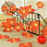 3pcs Fall Maple String Light Halloween 30Ft / 60 LED Lights Garland Home Decor