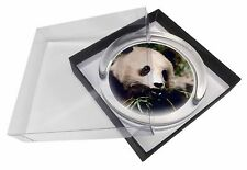 Panda Bear Glass Paperweight in Gift Box Christmas Present, ABP-2PW