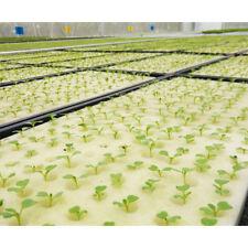 100Pcs Cubes Sponge For Net Pot Cup Basket Hydroponic Seed Grow Plant 1''x1''
