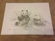 Pandas by David Shepherd Limited Edition and signed by the artist