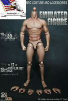 """ZC Toys 12"""" Muscular Male Action Figure Body Fit 1/6 HT Head Sculpt Carved Dolls"""