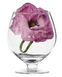 Clear Large Oversized Cognac Brandy Glass - H14cm D8cm - Vase For Faux Flowers