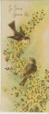 VINTAGE WOOD TRUSH BIRD SPRING SEASON FORSYTHIA SHABBY CARD DISTRESSED ART PRINT
