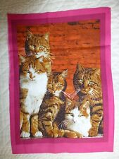 CATS Fabric Panel Cotton Craft Quilting - Ginger Tabby Cats