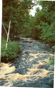 POSTCARD OF A FLOWING TROUT STREAM IN NORTHERN MINNESOTA