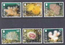 JERSEY, 2004 CORALS, SG 1163-68,  FINE USED. CAT £9.50