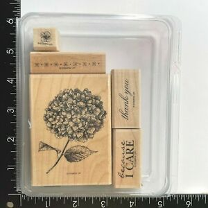 Stampin Up Because I Care Wood Mounted Rubber Stamp Set of 5 Hydrangea Thank You