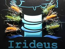 Irideus Caddis Sacramento River Combo Nymph Fly Fishing Trout Fly Attractor