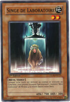 Konami Yu-Gi-Oh! n° 03030892 - Singe de laboratoire - GLAS-FR025