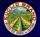 Upland Euclid Mt. Baldy Orange Citrus Fruit Crate Box Label Art Print