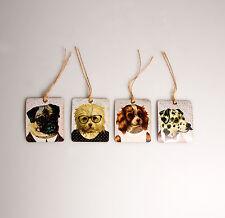 Sass & Belle Chic Set of 8 Vintage Dog Dress Up Gift Tags/Label 3 Designs 6x7cm