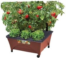 Raised Garden Bed Grow Box Kit Watering System Rolling Planter Vegetables Tomato