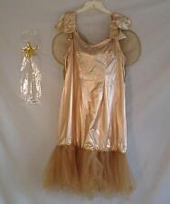Adult Female Tinkerbell or Fairy Costume - Size XL!
