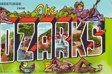 GREETINGS FROM THE OZARKS 1976 entry for WHO Music Sweepstakes Dwayne Peterson