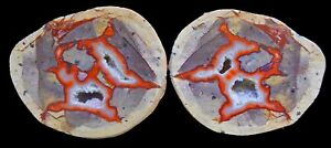 AGATE CREEK THUNDEREGG PAIR - PERFECT HIGHLY POLISHED