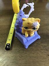 Littlest Pet Shop, McDonalds Happy Meal Toy, Kitten on Purple Seat Buy 3 Get (1)