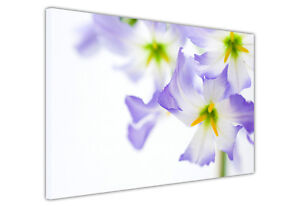 CANVAS WALL ART PRINTS PICTURES LILAC PURPLE YELLOW FLOWERS DECORATION PHOTOS