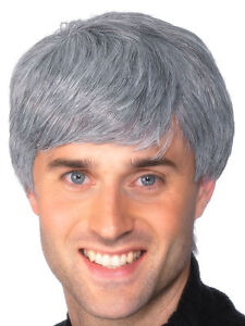 Mens Grey Fancy Dress Wig Male Corporate Gray Guy wig Mans New by Smiffys