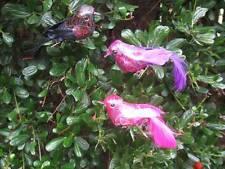Artificiale PICCOLA Fancy Fabric & Feather Birds-Set di 3-Rosa / posteriore / VIOLA