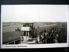Germany~1953 Dortmund-Wambel~Pferde-Rennbahn~Horse Race